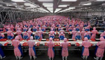 manufacturing7-deadchickenprocessingplant-dehuicity-jilinprovince_china_edwardburtynsky_2005